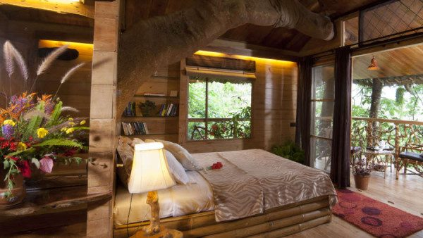 These are the best treehouses around the world - Verandah house interiors ...