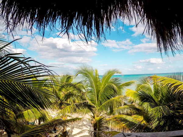 The Ultimate Guide to Mexico's Akumal in one Day!