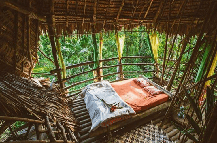 Sleeping in a treehouse