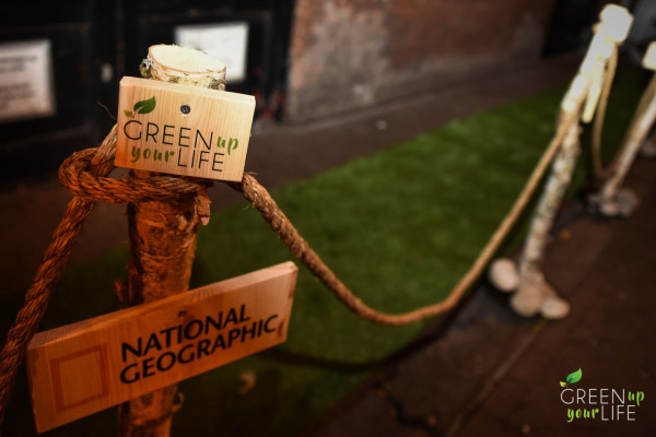Green carpet at Dutch premiere of Before The Flood